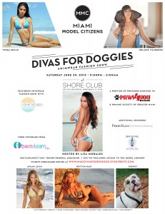 Divas for Doggies Invite